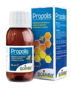 PROPOLIS BOIRON 125ML