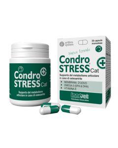 Condrostress + Cat 30cps