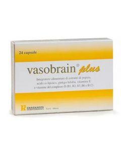 Vasobrain Plus 24 Capsule