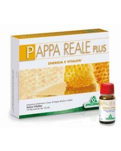 Pappa Reale Plus Integratore Alimentare 12 Fiale