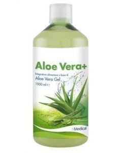 ALOE VERA+ SUCCO 1L