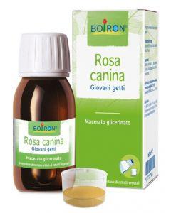 Rosa Canina Mg 60ml Int