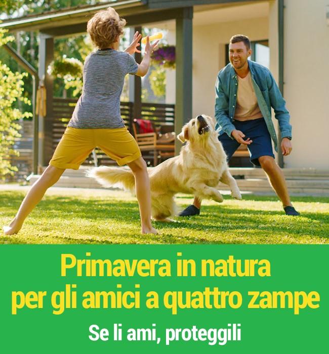 Primavera in natura per gli amici a 4 zampa. Se li ami, proteggili!